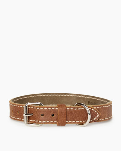 Roots-New For March Dog Accessories-Medium Leather Dog Collar-Natural-A