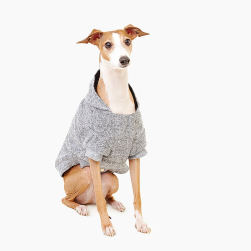 Roots-New For November Roots X Canada Pooch®-Pooch Salt and Pepper Hoody Size 14-Salt & Pepper-A