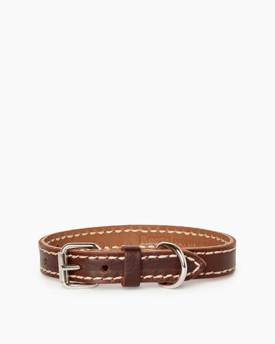 Roots-New For March Dog Accessories-Small Leather Dog Collar-Chocolate-A
