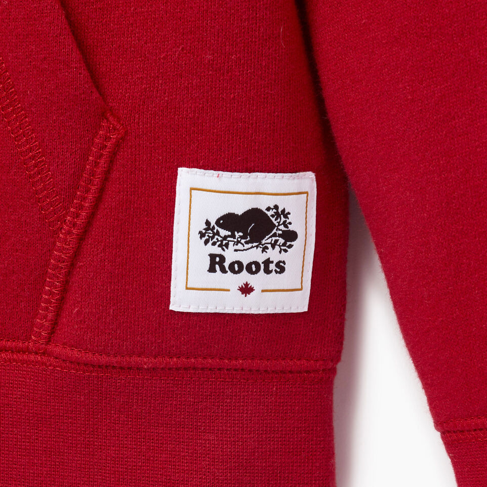 Roots-Kids Our Favourite New Arrivals-Boys Canada Full Zip Hoody-Sage Red-D