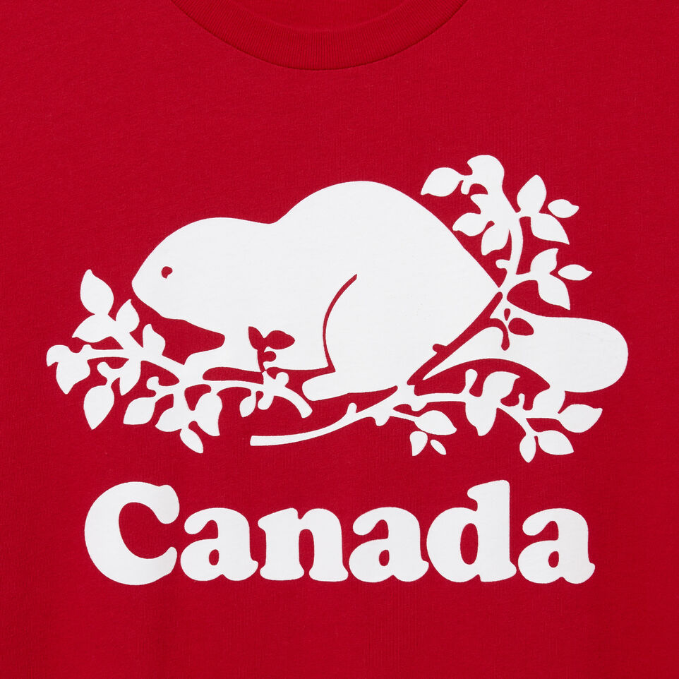 Roots-Men Canada Collection By Roots™-Mens Cooper Canada T-shirt-Sage Red-D