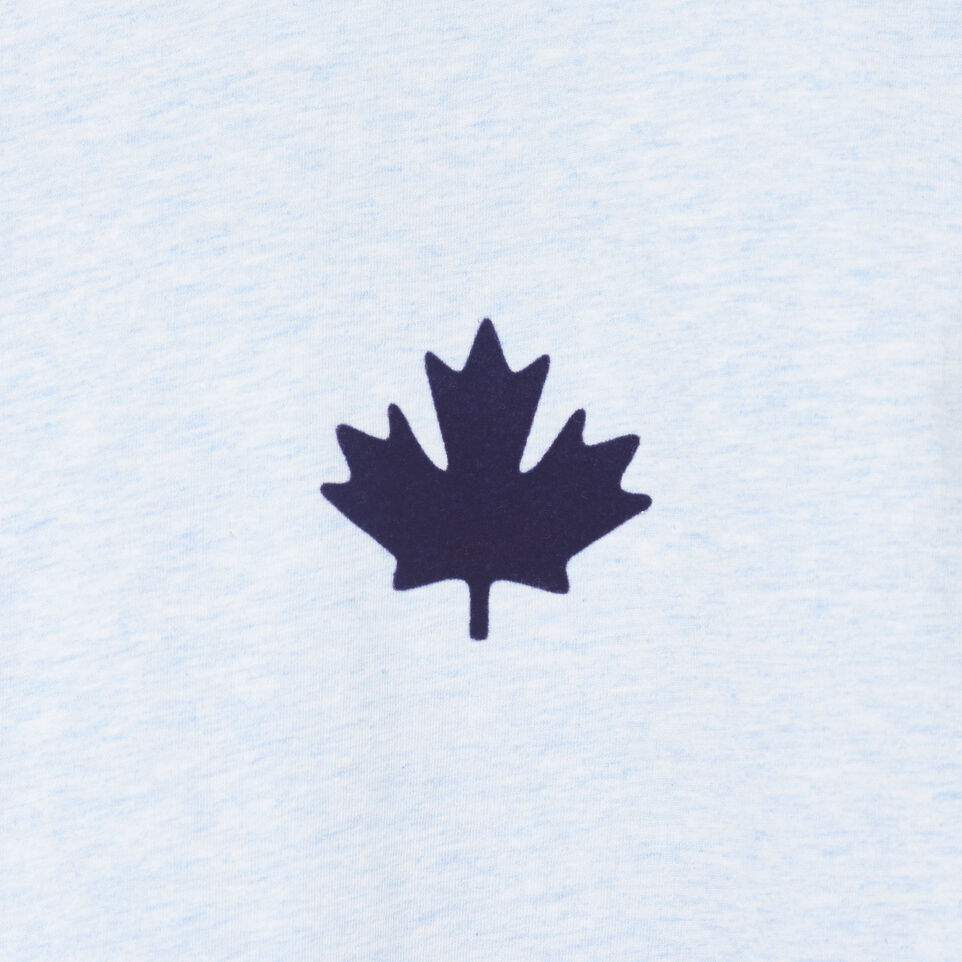 Roots-New For July Men-Mens Canada Cabin Ringer T-shirt-Baby Blue Mix-D
