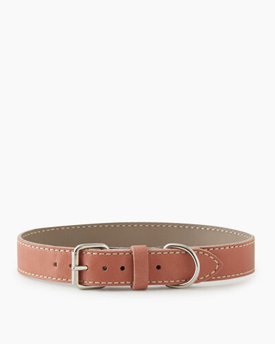 Roots-New For March Dog Accessories-Extra Large Leather Dog Collar-Canyon Rose-A