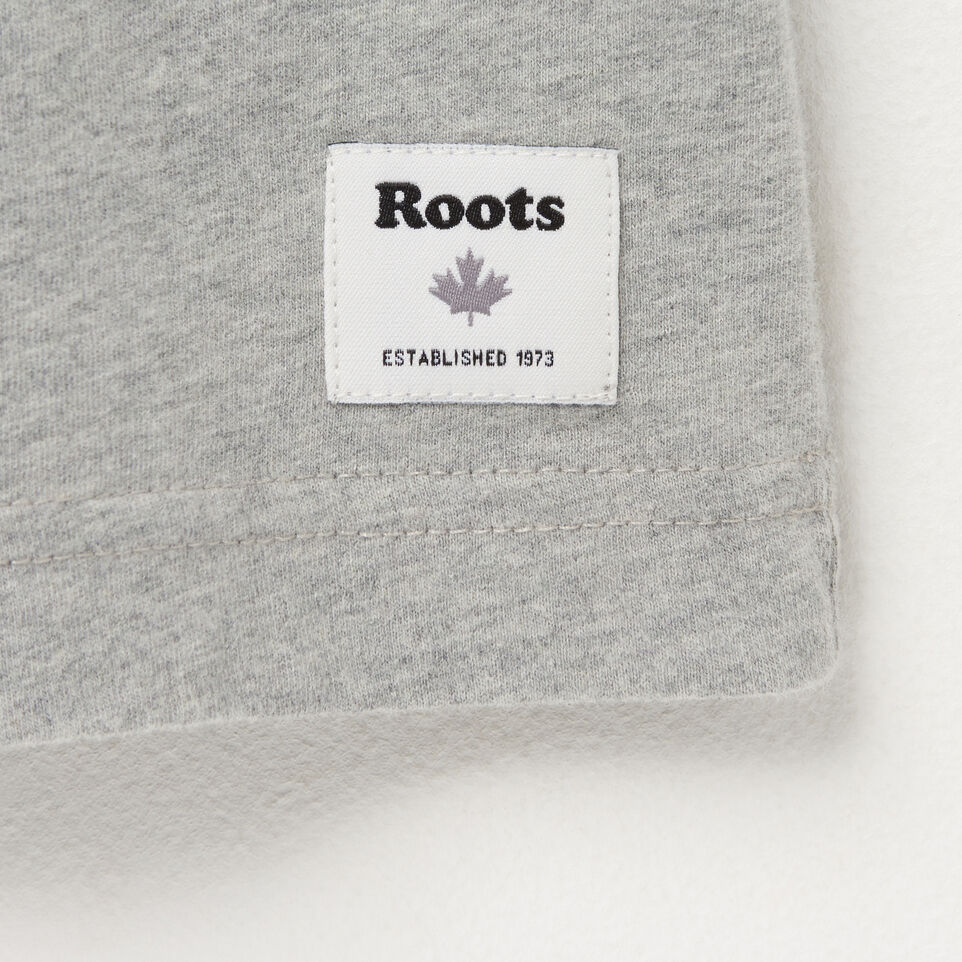 Roots-undefined-Mens Letterman Raglan T-shirt-undefined-C