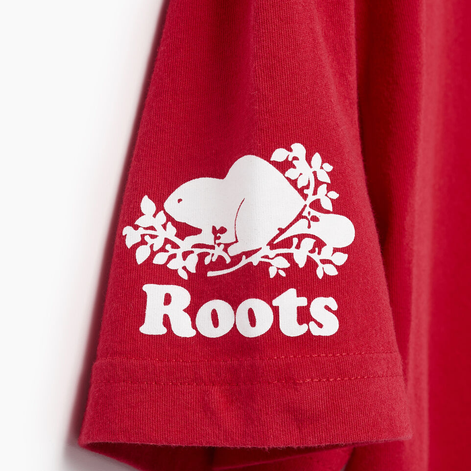 Roots-Men Our Favourite New Arrivals-Mens Blazon T-shirt-Sage Red-E