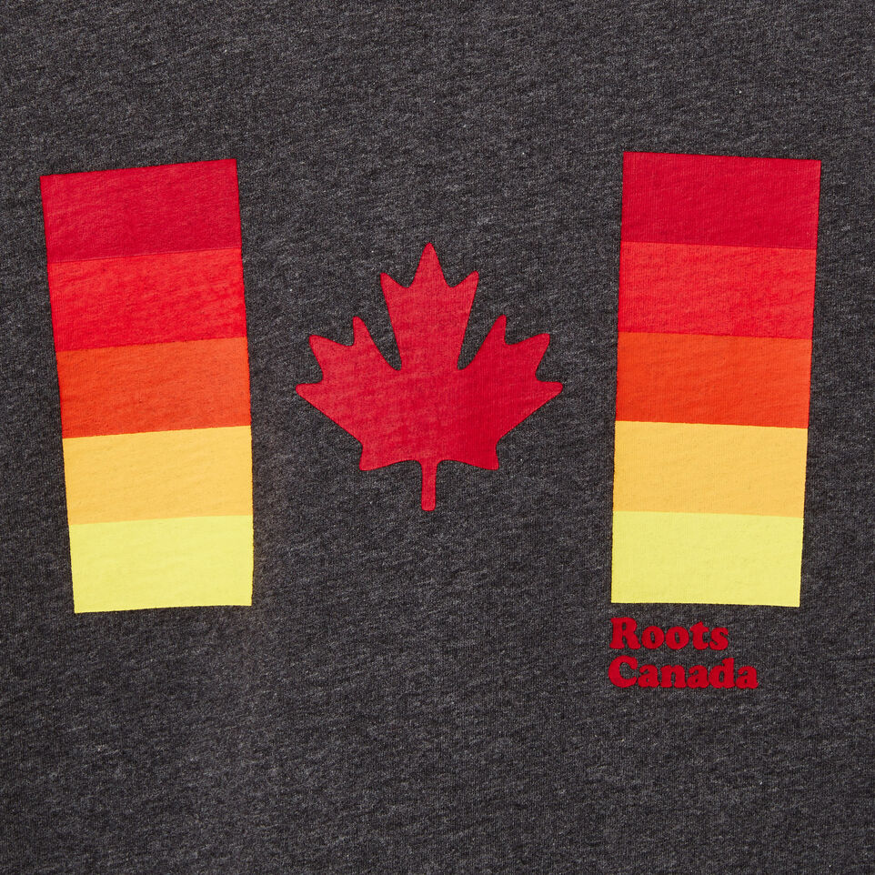 boys gradient canadian flag t shirt roots