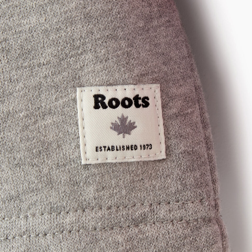 Roots-Kids Our Favourite New Arrivals-Toddler 2.0 Colourblock Raglan Hoody-Grey Mix-C