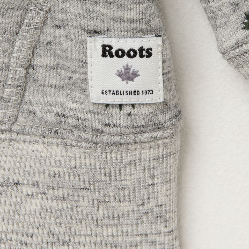 Roots-undefined-Toddler Ravenwood Hoody-undefined-C