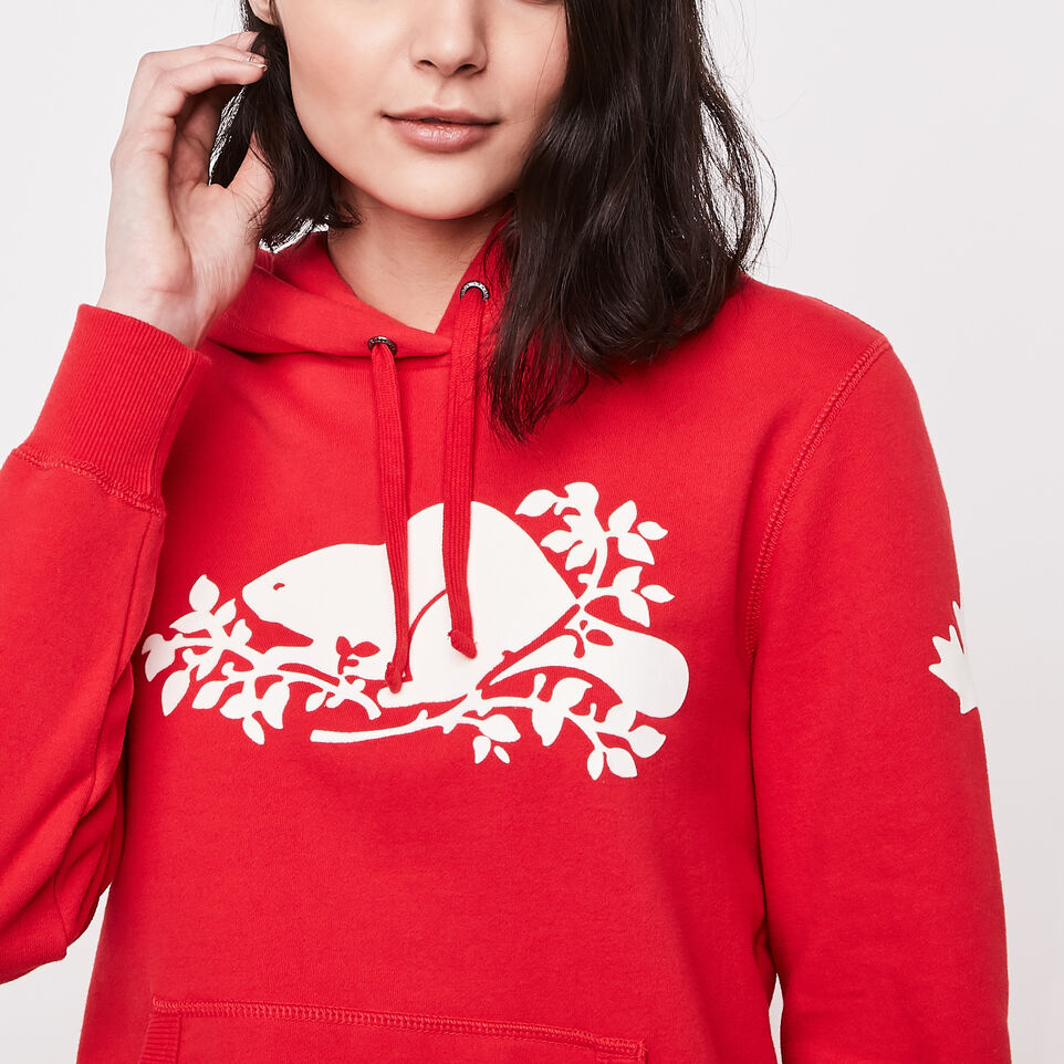 Roots-undefined-Roots Cooper Kanga Hoody-undefined-B