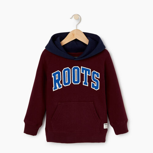 Roots-Kids Toddler Boys-Toddler 2.0 Colourblock Raglan Hoody-Cabernet-A