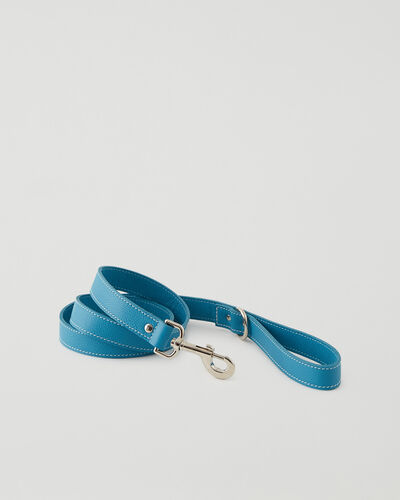 Roots-Leather Dog Accessories-Leather Dog Leash-Blue Lagoon-A