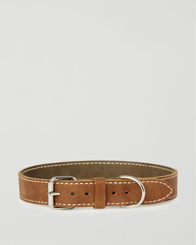 Roots-Leather Dog Accessories-Extra Large Leather Dog Collar-Natural-A