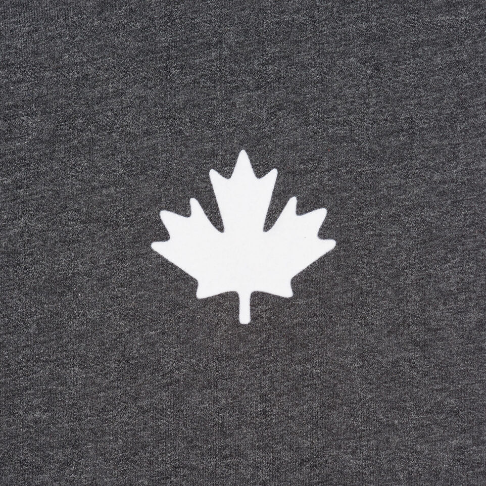 Roots-undefined-Mens Canada Cabin Ringer T-shirt-undefined-D