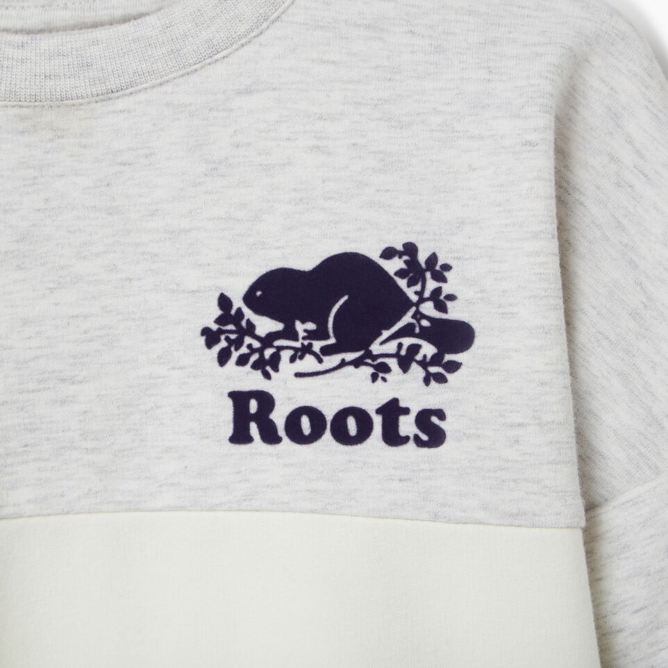 Roots-Kids Our Favourite New Arrivals-Toddler Colour Block Sweatshirt-undefined-C