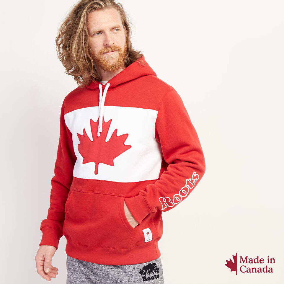 Roots-New For July Men-Blazon Hoody-Sage Red-A