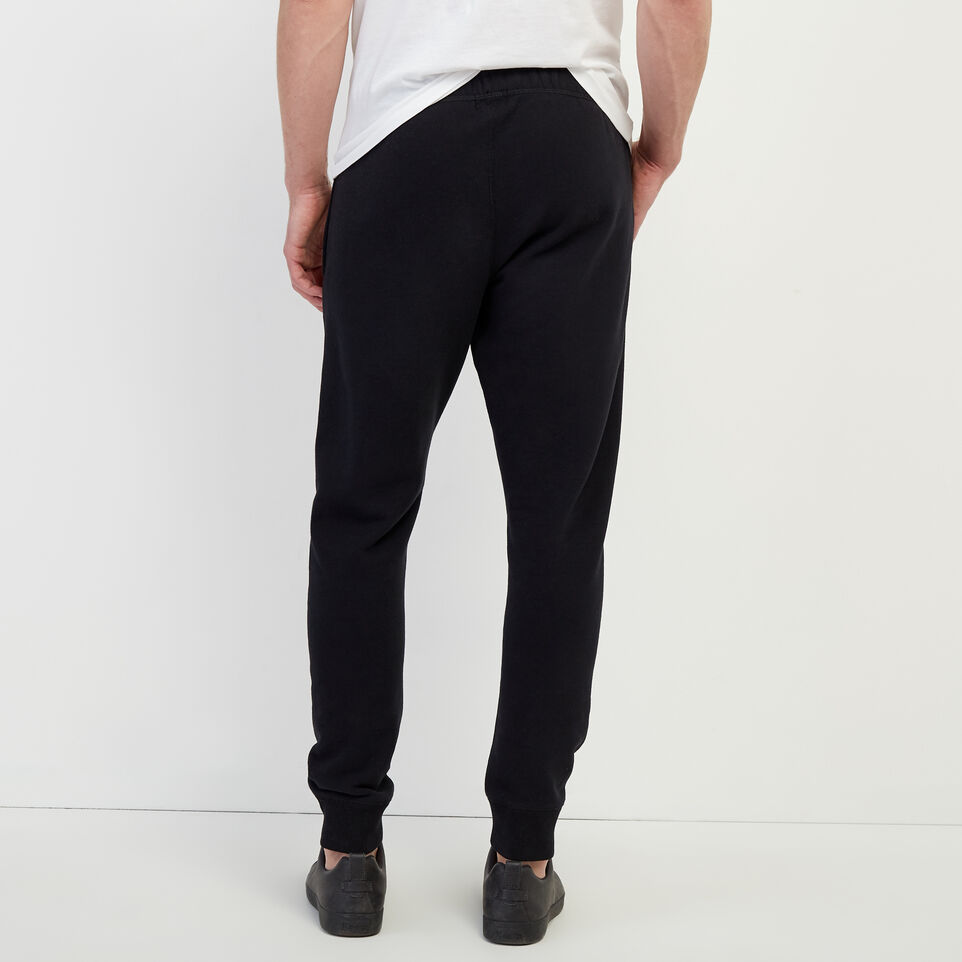 Roots-undefined-Tonal Park Slim Sweatpant-undefined-D