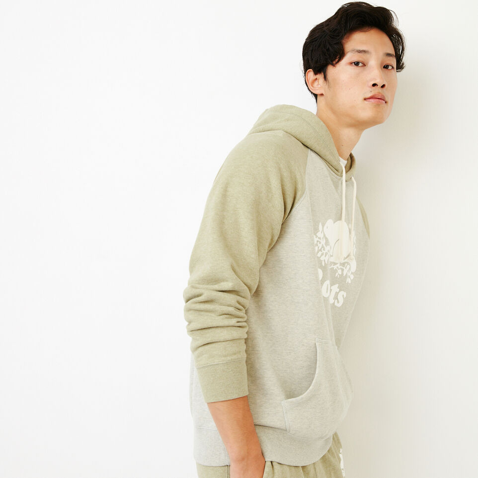 Roots-Men Our Favourite New Arrivals-Cooper Kanga Hoody-Spray Green Mix-C