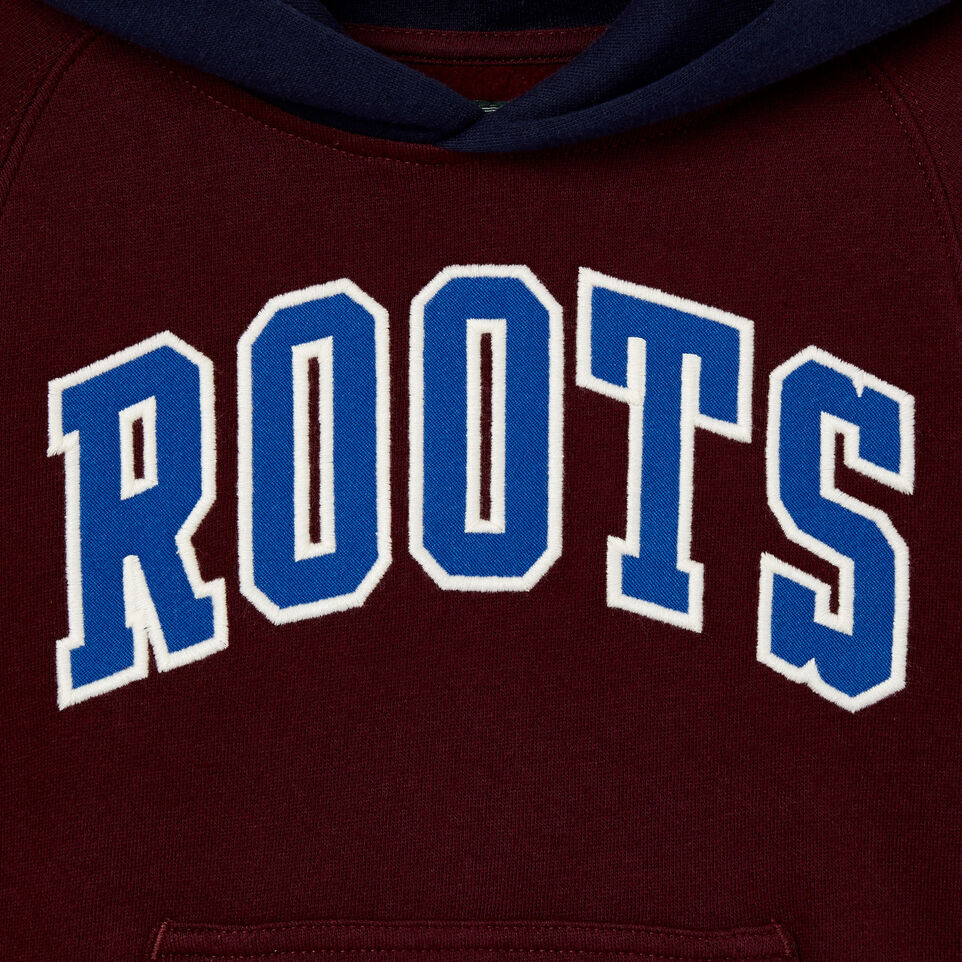 Roots-undefined-Toddler 2.0 Colourblock Raglan Hoody-undefined-D