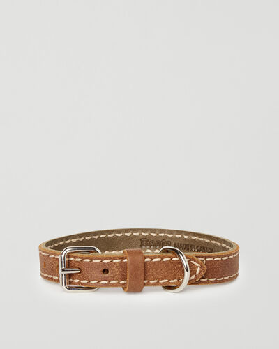 Roots-New For This Month Dog Accessories-Small Leather Dog Collar-Natural-A