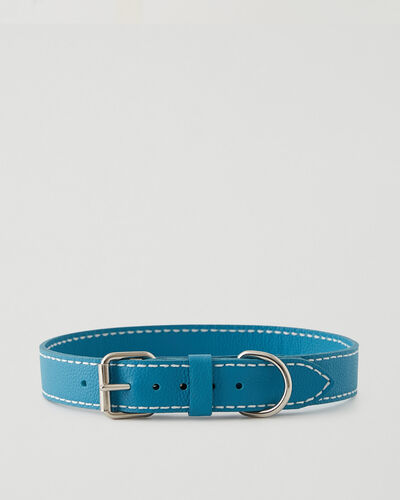Roots-Leather Dog Accessories-Extra Large Leather Dog Collar-Blue Lagoon-A