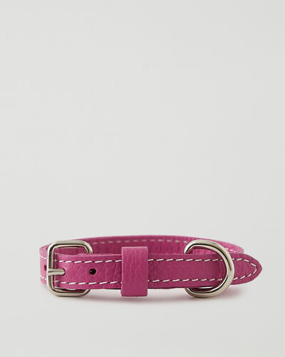 Roots-Leather Dog Accessories-Extra Small Leather Dog Collar-Pink Orchid-A