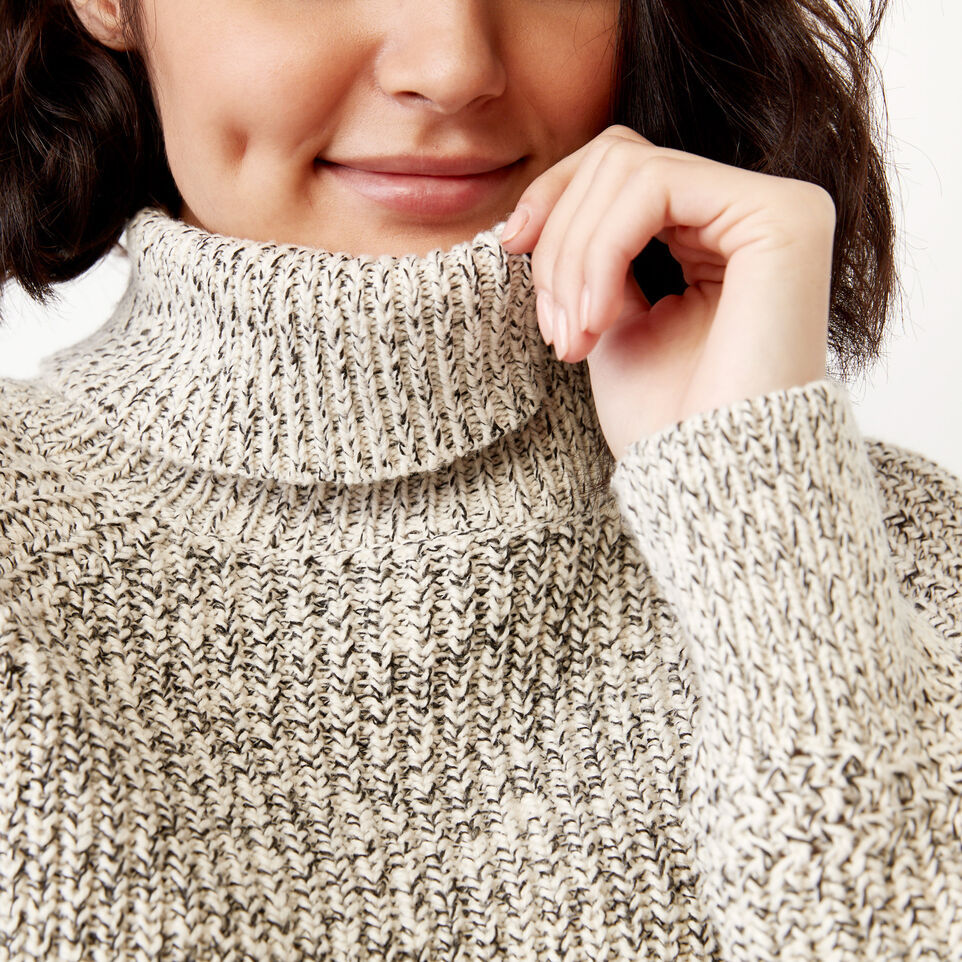 Roots-undefined-Snowy Fox Turtleneck Sweater-undefined-A