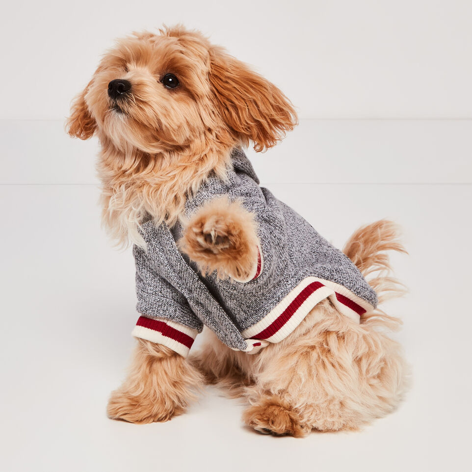 Roots-undefined-Canada Pooch Hoody Size 10-undefined-D