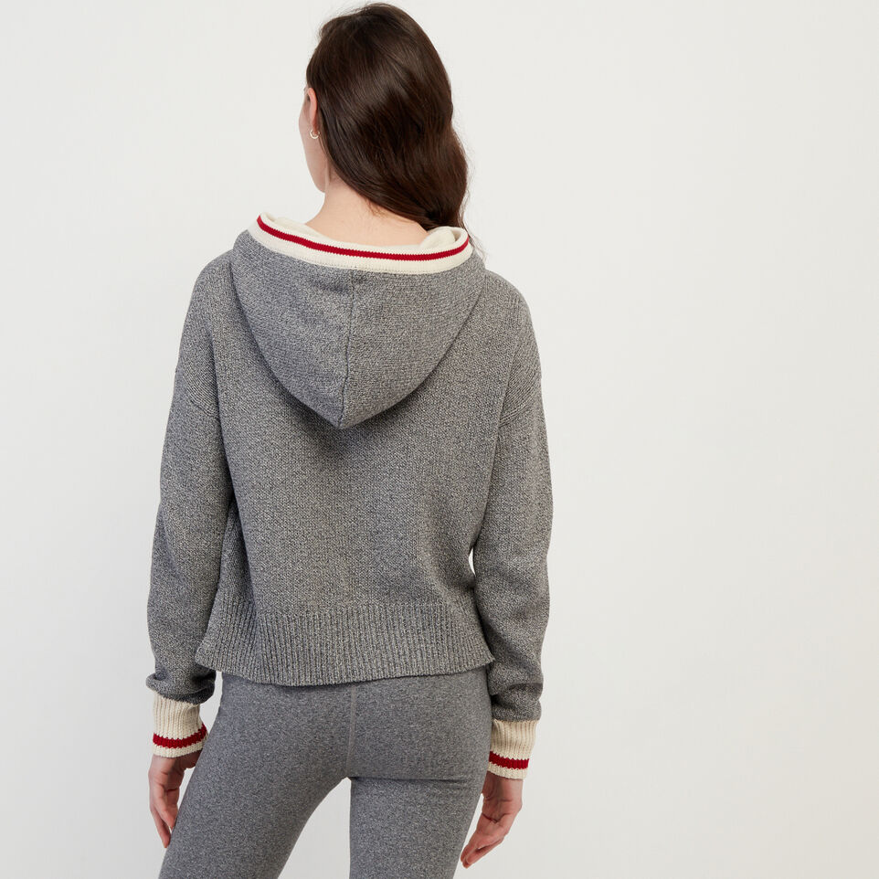 Roots-undefined-Cabin Hoody Sweater-undefined-D