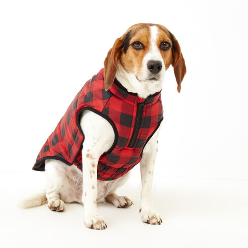 Roots-New For November Roots X Canada Pooch®-Pooch Park Plaid Puffer Size 18-Red-A