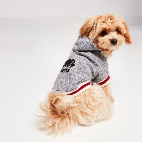Roots-New For November Roots X Canada Pooch®-Canada Pooch Hoody Size 10-Salt & Pepper-A