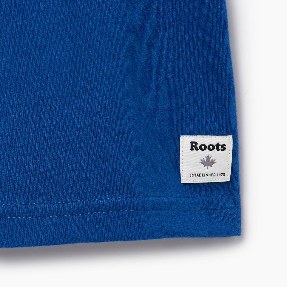 Roots-Kids Our Favourite New Arrivals-Toddler Gradient Cooper T-shirt-Active Blue-C