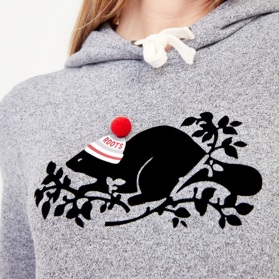 Roots-undefined-Buddy Cozy Hoody-undefined-E