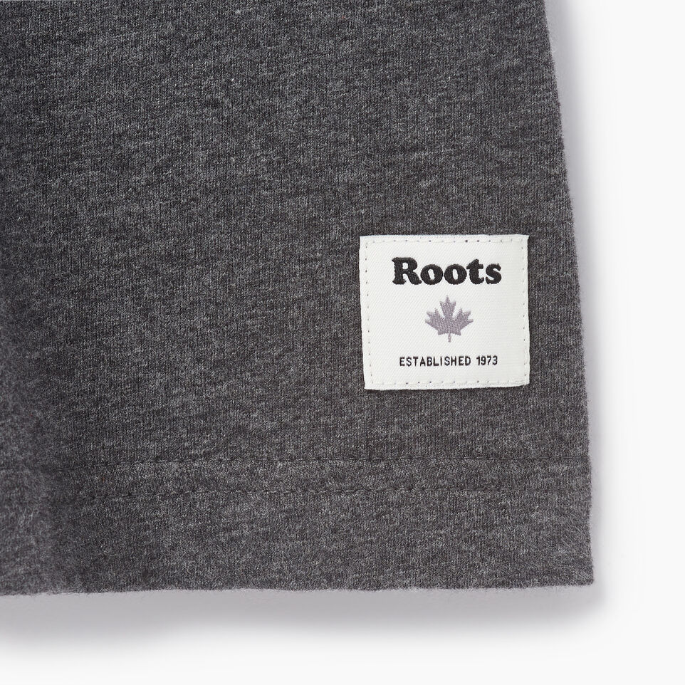 Roots-undefined-Mens Canada Cabin Ringer T-shirt-undefined-C