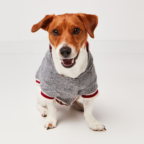 Roots-New For November Roots X Canada Pooch®-Canada Pooch Hoody Size 12-Salt & Pepper-A
