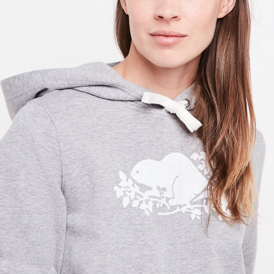 Roots-undefined-Busted Cooper Cropped Hoody-undefined-C