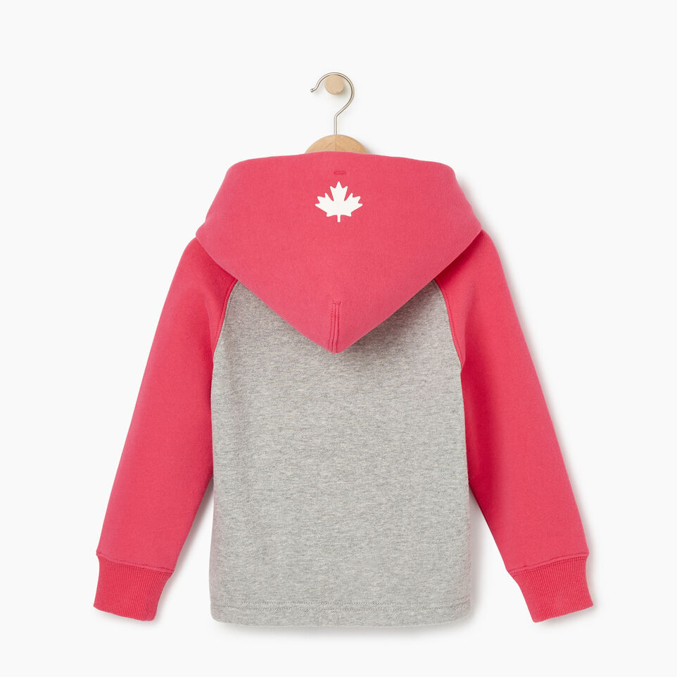 Roots-Kids Our Favourite New Arrivals-Toddler 2.0 Colourblock Raglan Hoody-Grey Mix-B