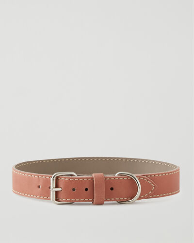 Roots-New For This Month Dog Accessories-Extra Large Leather Dog Collar-Canyon Rose-A
