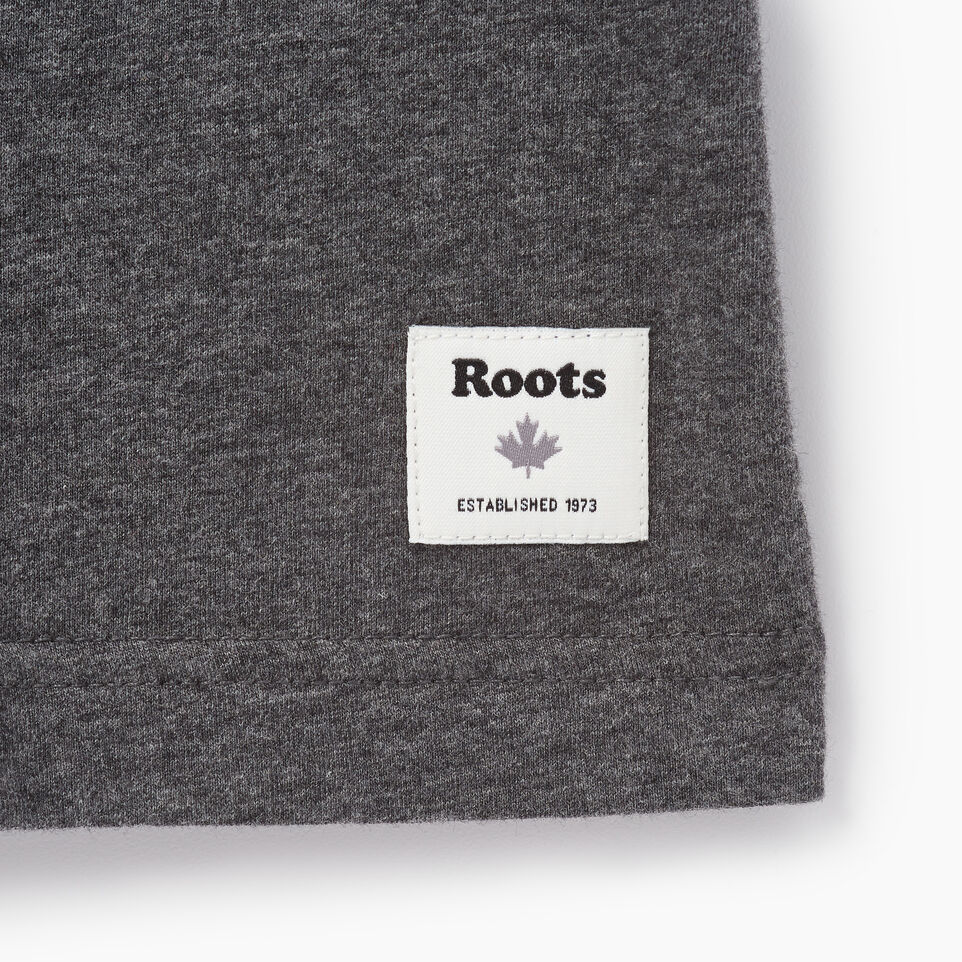 Roots-undefined-Mens Roots Cabin Ringer T-shirt-undefined-C