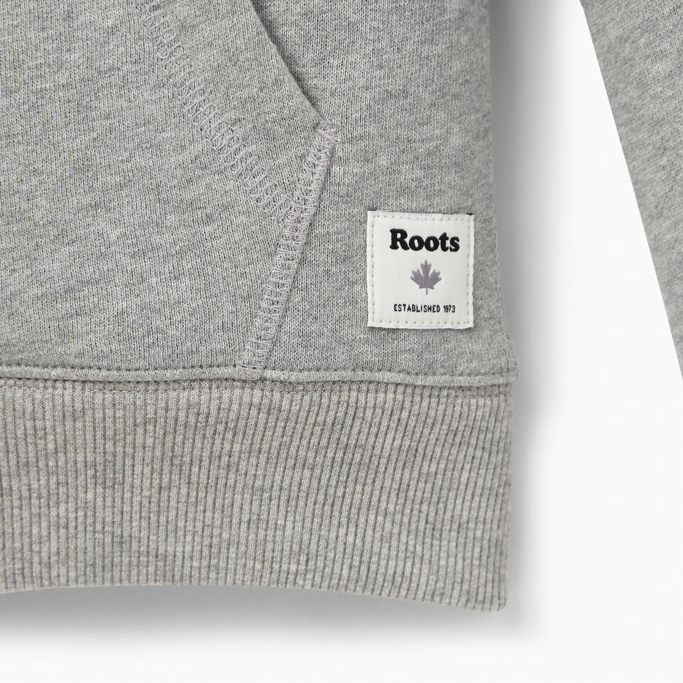 Roots-undefined-Boys Plated Fleece Full Zip Hoody-undefined-C