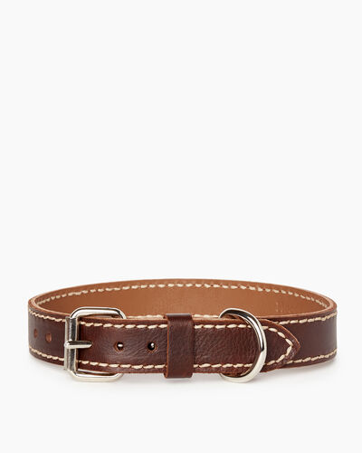 Roots-New For March Dog Accessories-Medium Leather Dog Collar-Chocolate-A