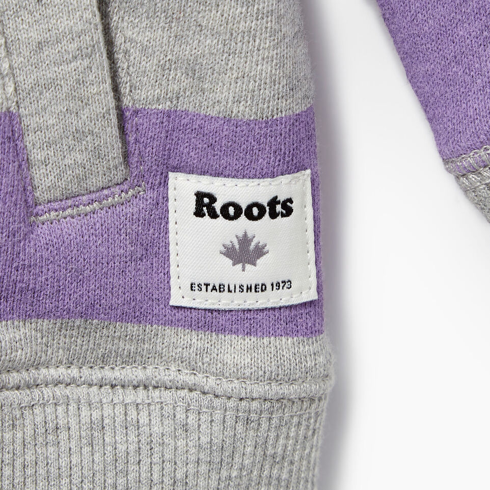 Roots-Kids Our Favourite New Arrivals-Baby Ombre Stripe Full Zip Hoody-Grey Mix-C