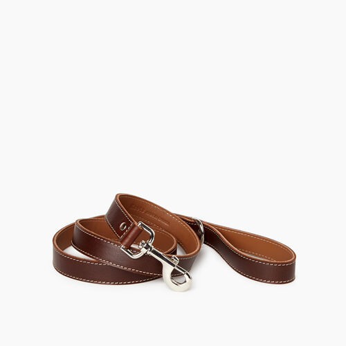 Roots-New For January Dog Accessories-Leather Dog Leash-Chocolate-A