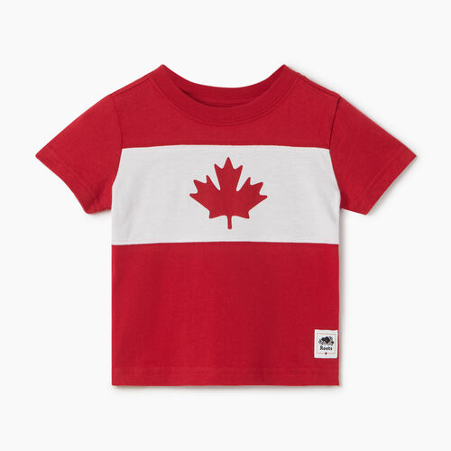 Roots-Kids Baby-Baby Blazon T-shirt-Sage Red-A
