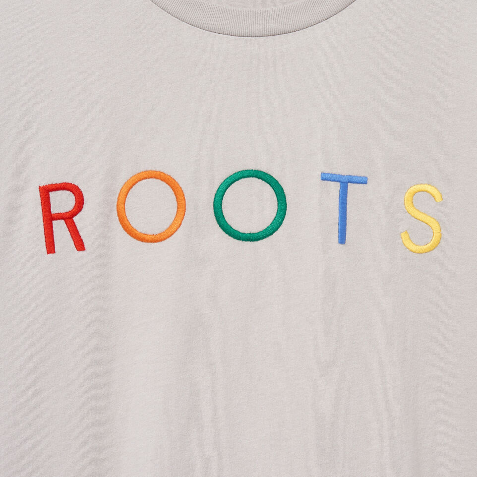 Roots-undefined-Mens Spectrum T-shirt-undefined-D
