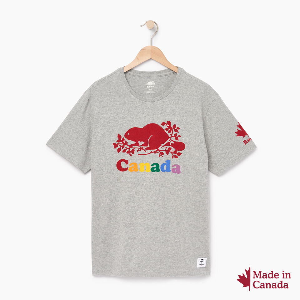 Roots-Men Canada Collection By Roots™-Mens Cooper Colours Canada T-shirt-Grey Mix-A