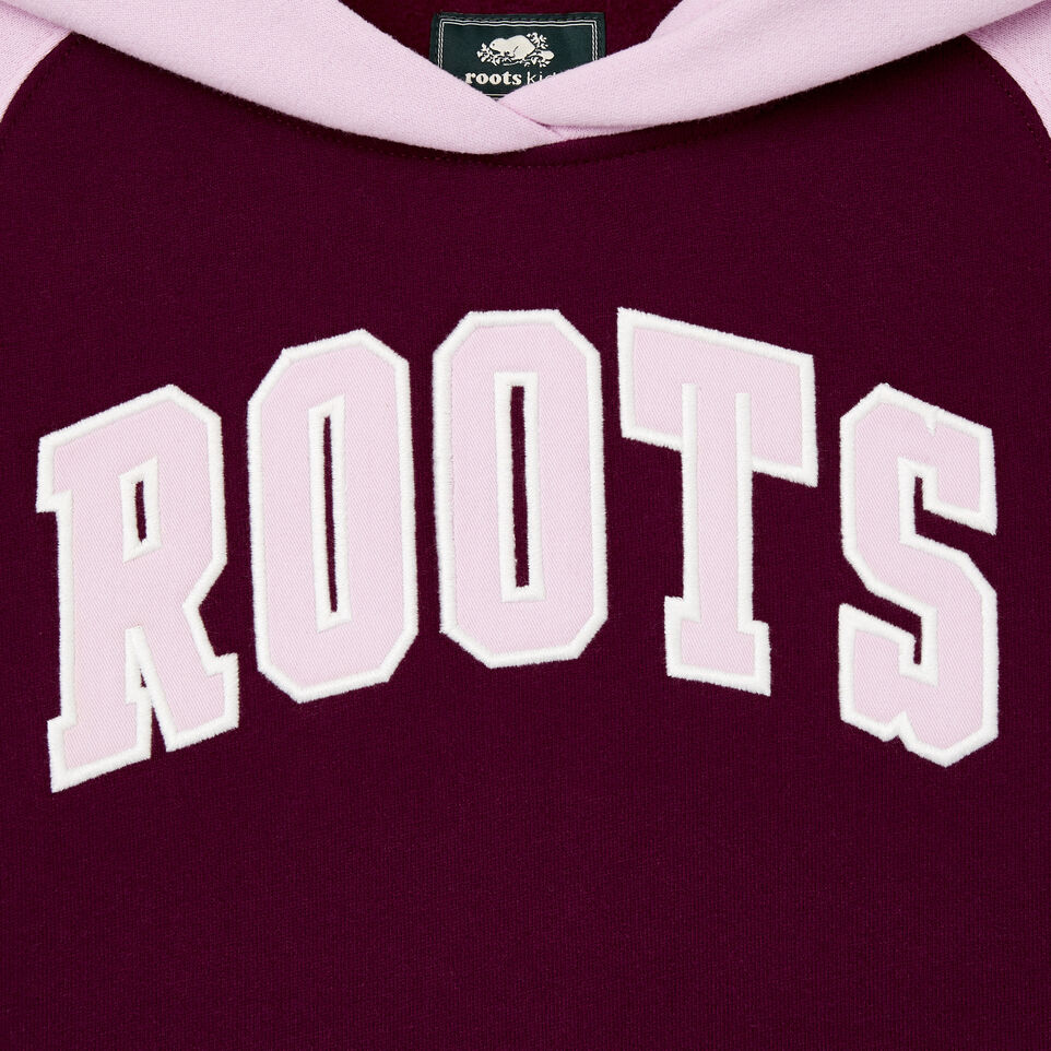 Roots-Kids Our Favourite New Arrivals-Girls 2.0 Colour block Raglan Hoody-Pickled Beet-E