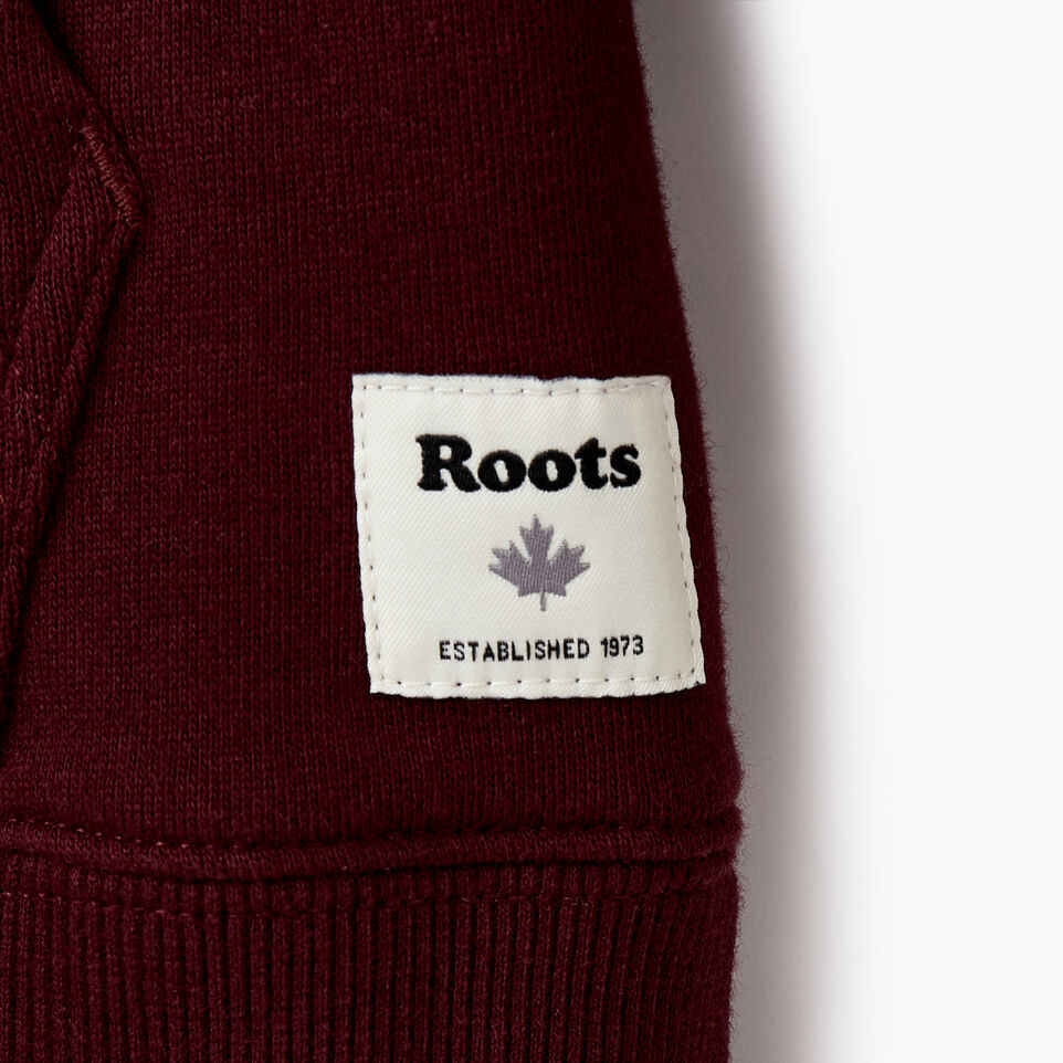 Roots-undefined-Boys 2.0 Colourblock Raglan Hoody-undefined-D