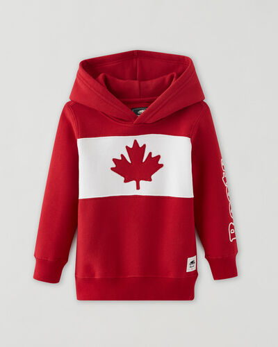 Roots-Sweats Toddler Boys-Toddler Blazon Hoodie-Sage Red-A