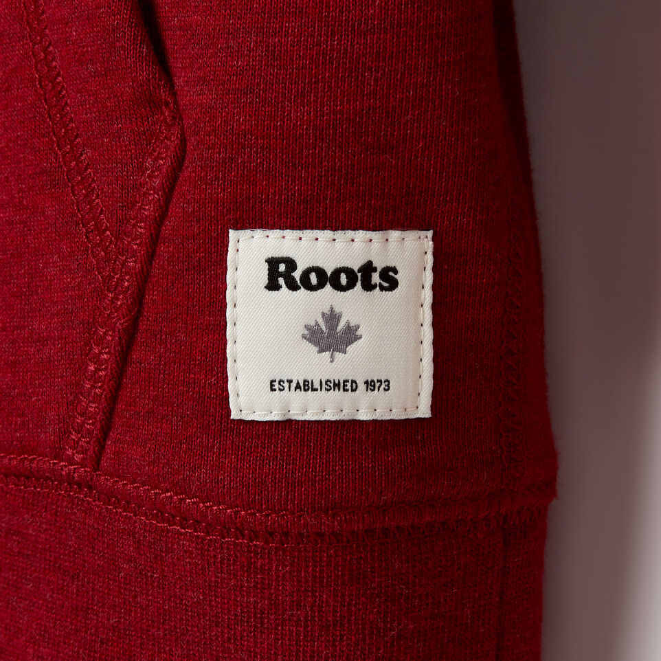 Roots-Kids Boys-Boys Laurel Hoody-Cabin Red Mix-E