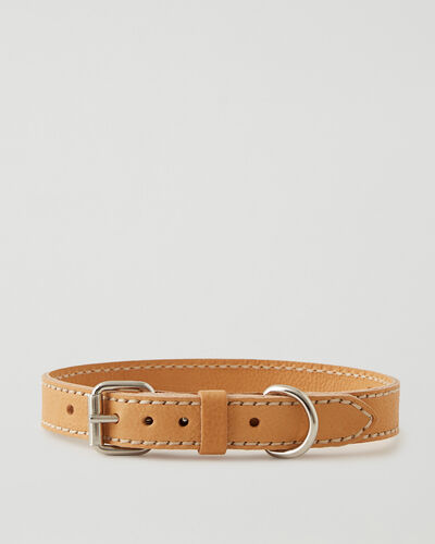 Roots-Leather Dog Accessories-Large Dog Collar Veg-Natural-A